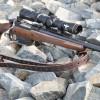 Ruger 450 Bushmaster Scout