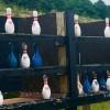 Down Range Radio #575: Bowling Pin Shooting Reincarnated