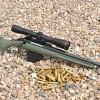 Review: Ruger American Predator .308