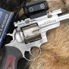 Down Range Radio #596: Hunting Hogs in Texas