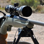 Reviewing The Ruger American Predator Rifle