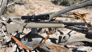 Review: Ruger Ranch Rifle .223