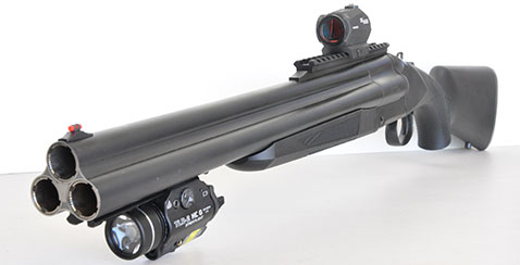 Review chiappa triple shotgun down range tv upon receiving the gun i mounted an excellent streamlight tlr 2 g light and combination green laser on the lower rail this 800 lumen light is my absolute thecheapjerseys Choice Image