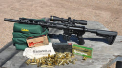 Review: Ruger AR-556 MPR in .450 Bushmaster